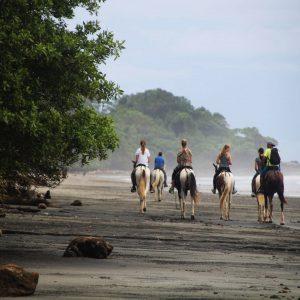 caballos tours manuel antonio