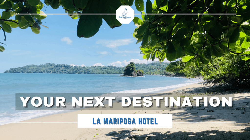 your destination la mariposa hotel